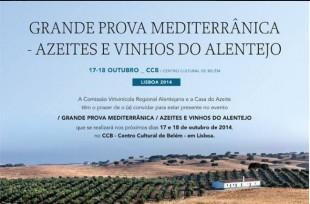 prova_vinhos_alentejo_ccb